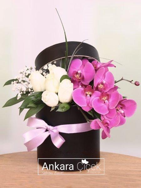 Kutuda Beyaz Gül  Mor Orkide