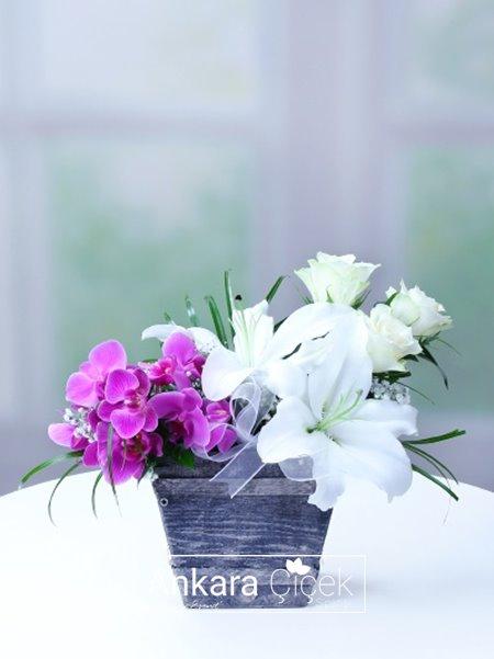 Taş Saksıda Orkide Lilyum Gül