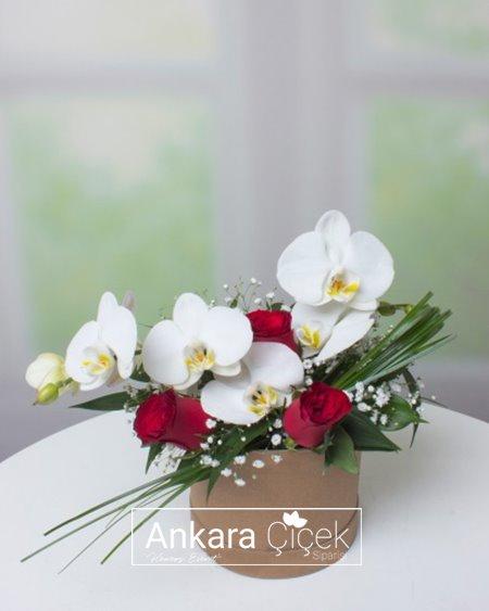 Kutuda Orkide ve Kırmızı Güller