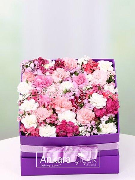 Mor Kutuda Kır Çiçekleri