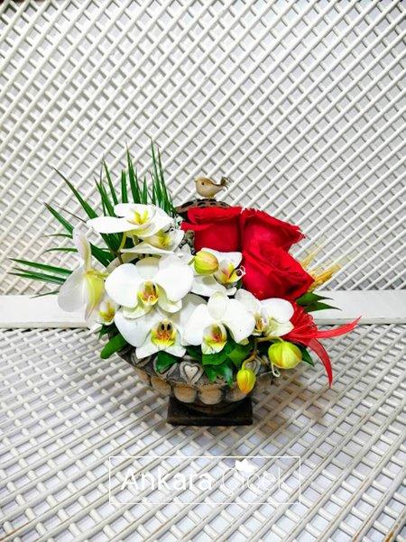 Beyaz Orkide Kırmızı Gül Aranjman