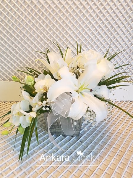 Seni Seviyorum Özürdilerim Çiçeği