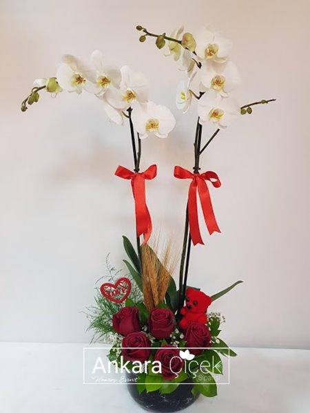 Ankara Çiçek