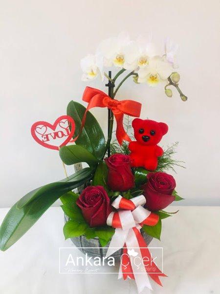 Sevgiliye Orkide Sevimli Ayıcık