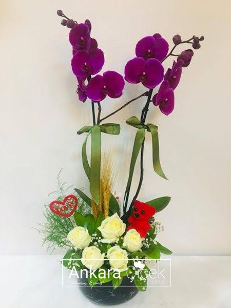 Orkide Beyaz Gül Aranjman