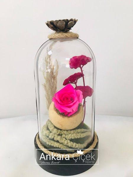 Pembe Gül Ölmeyen Çiçek